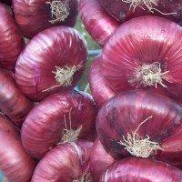 Лук красный ялтинский фермерский, 1 кг
